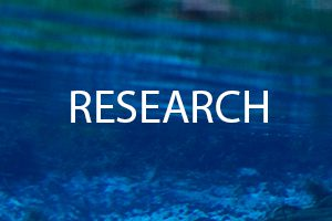 The word Research on a background of water